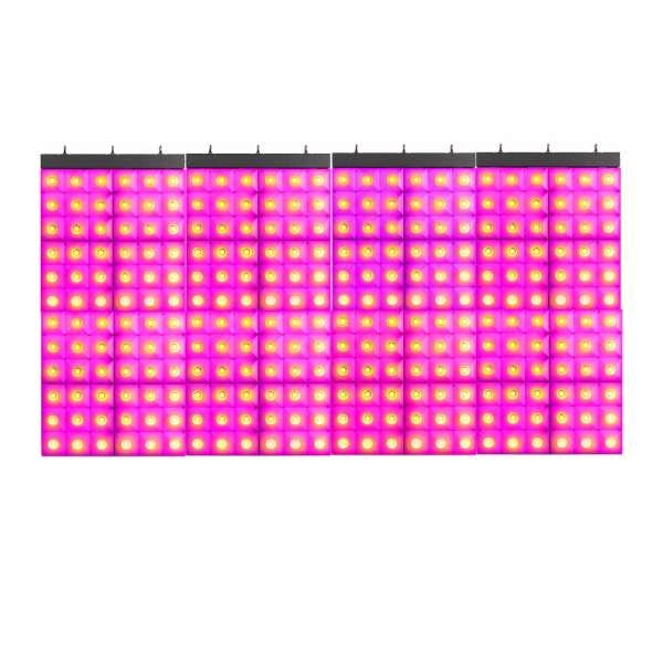 BeamZ LCB366 1m x 2m Effekt Wall